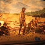 サンギランで化石博物館めぐり