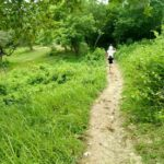 アバン遺跡の道