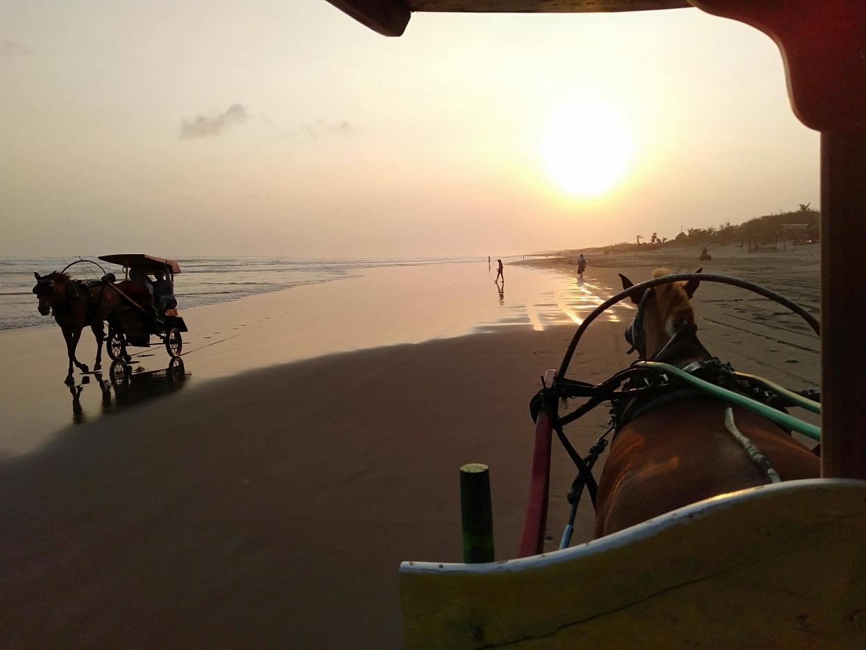 夕暮れのパラントゥリティス海岸馬車