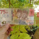 インドネシア記念紙幣